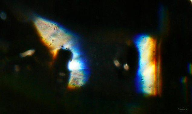 dia-d_vista_ventana